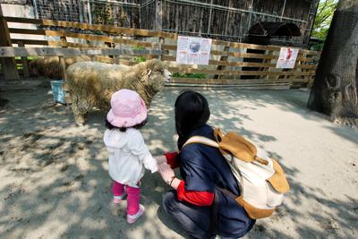 円山動物園にて